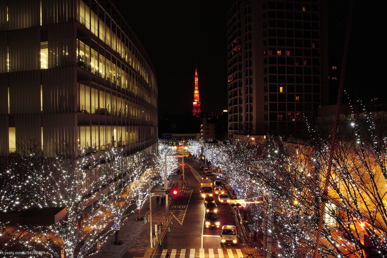 hills/night; roppongi hills/night view/六本木ヒルズ/夜景; 日本
